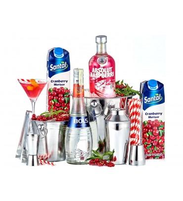 Cosmopolitan Pleasure Cocktail Party